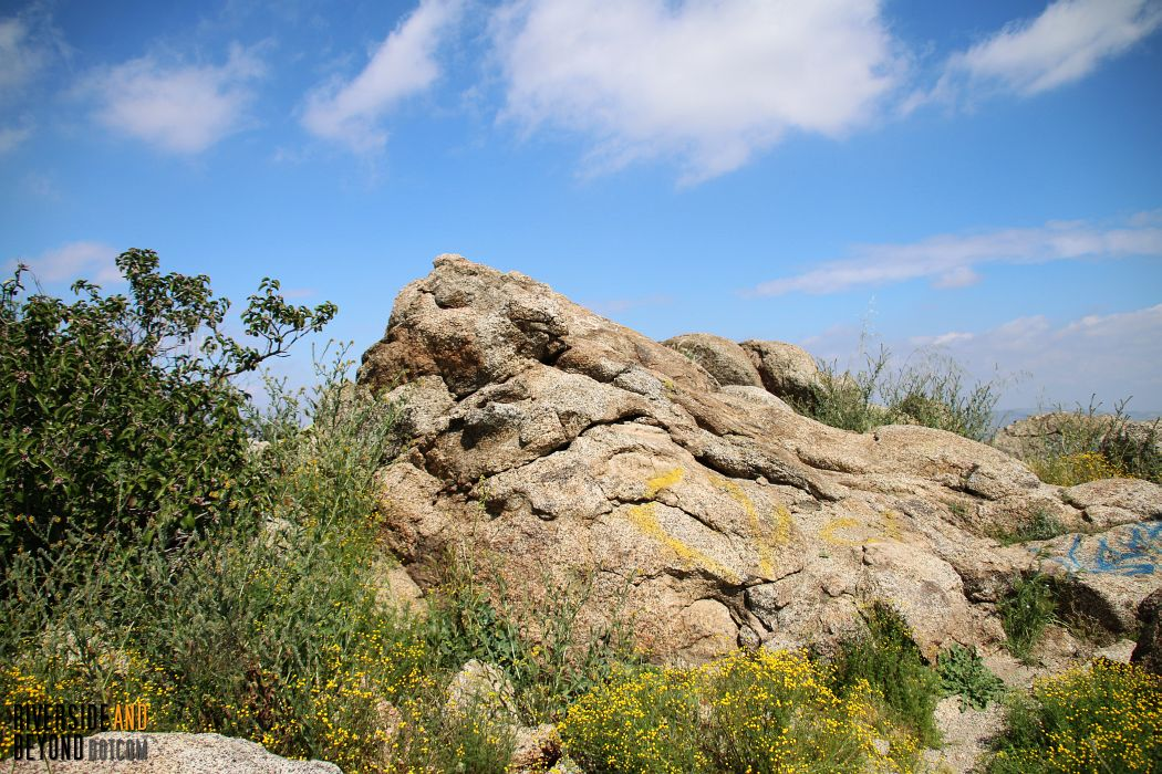 This appeared to be the tip-top of Terri Peak (I don't recommend climbing up here. A fall could have been disastrous.)