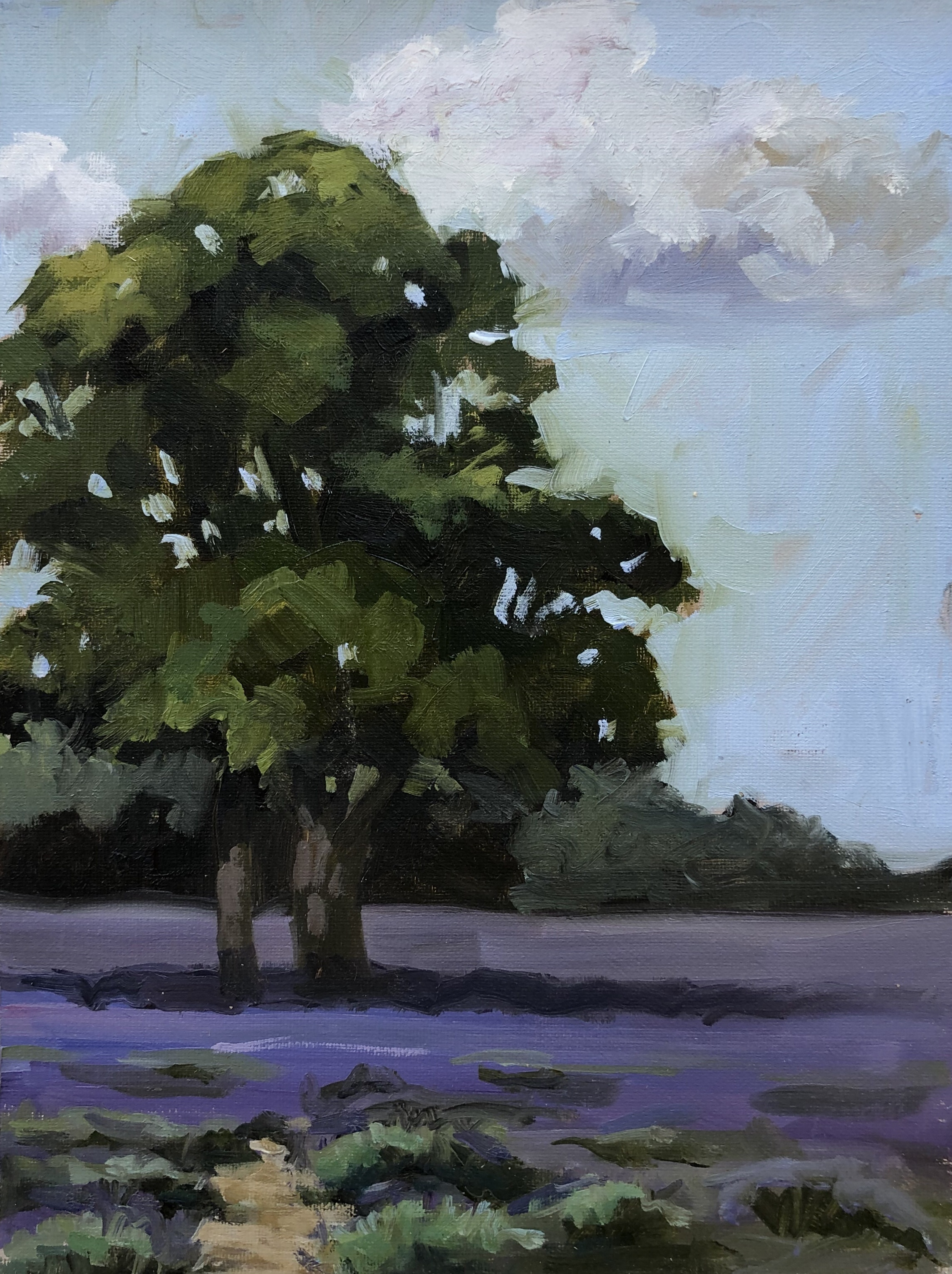 Tree at Mayfield by Penny German