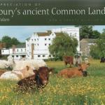 Sudbury's Ancient Common Land