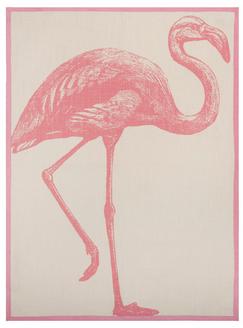 Thomaspaul_flamingo