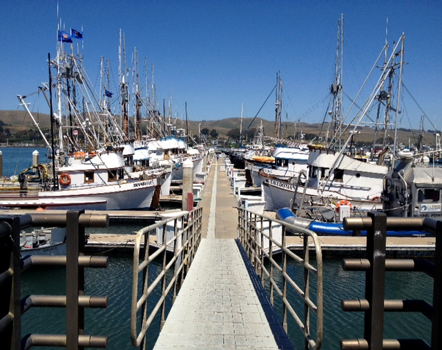 Boatdock