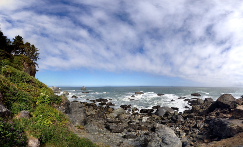 Patrick's Point State Park, CA - 21