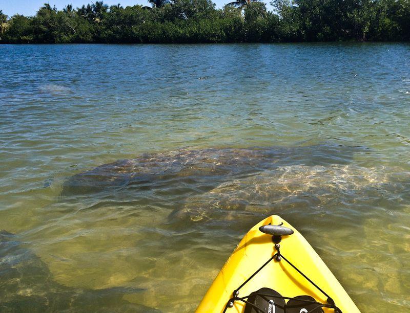 Kayaking_curryhammock-4