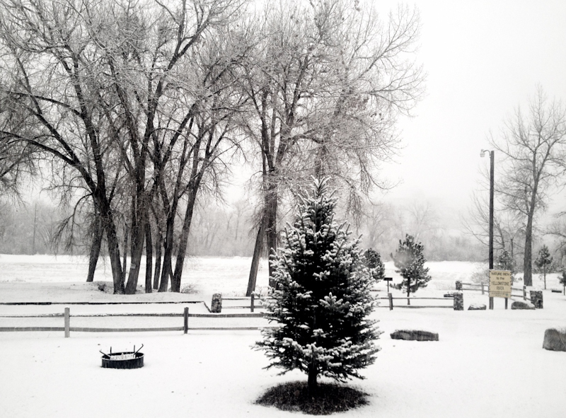 Billings_snow-1