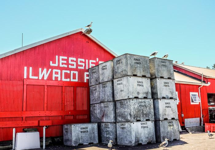 Jessies-1