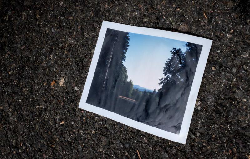 Nature-3