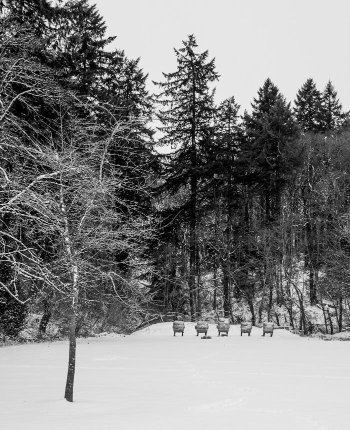 Snowyhike-4922
