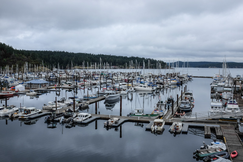 Fridayharbor-6