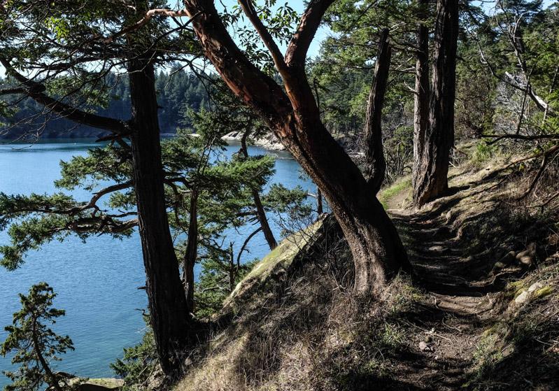 Sucia_shallowbay_hike-4887