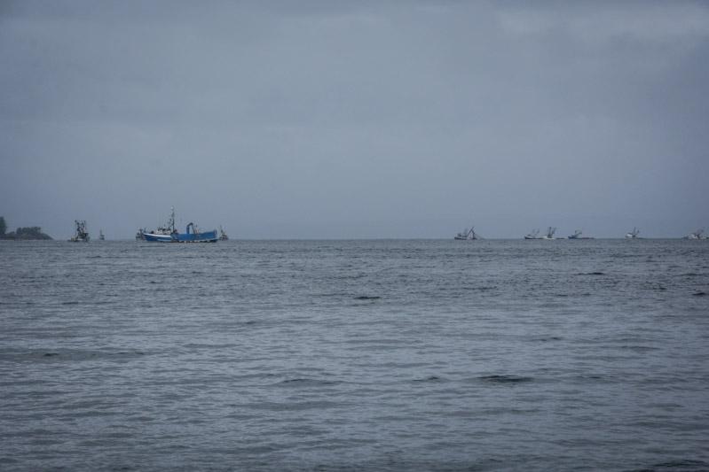 Sitka_fishingboats-6407