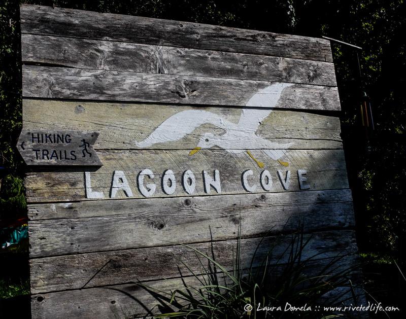 Lagooncove-5614