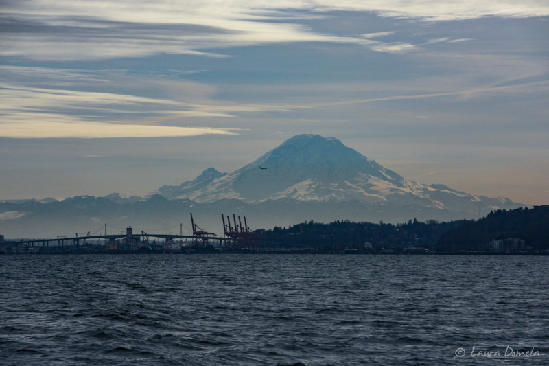 Pugetsound-0262