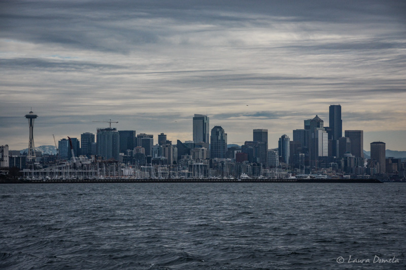 Pugetsound-0263