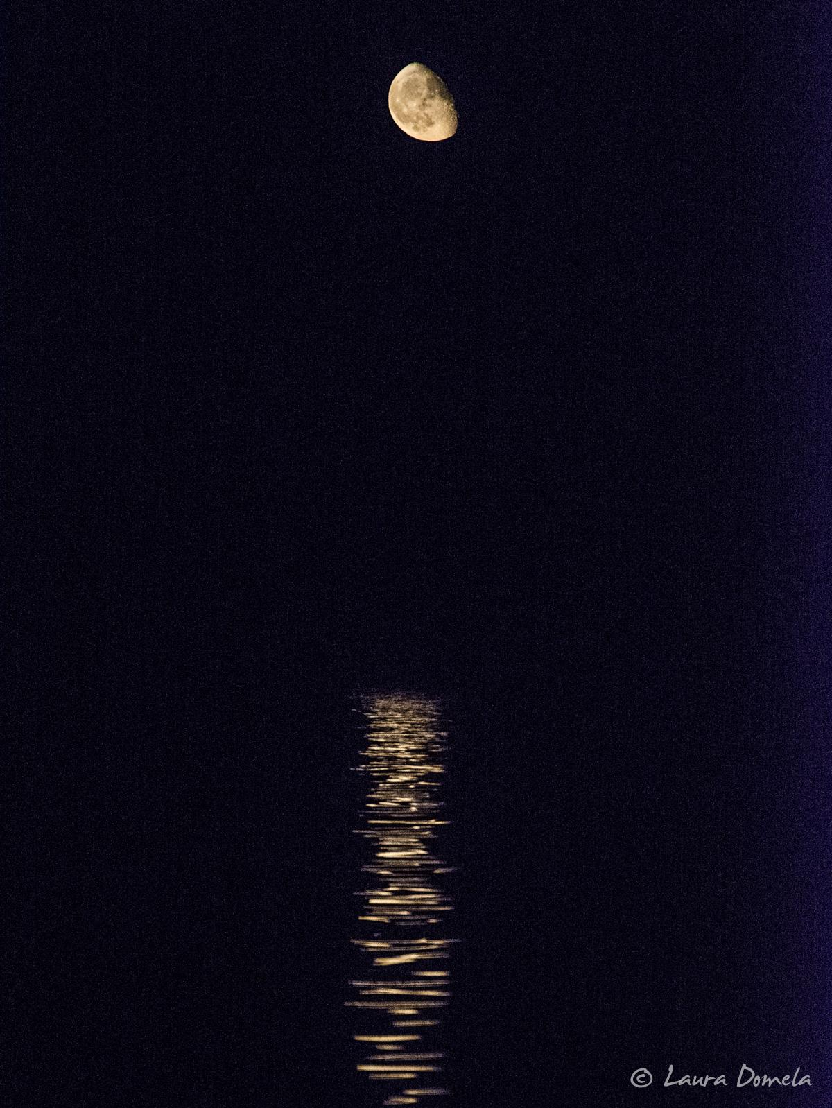 rebeccaspit_moon-8016