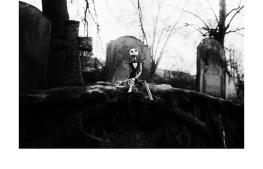 Perché in fondo Jack, come la maggior parte dei soggetti (in)animati delle sue foto, non è quello che sembra. Ad un occhio un po' distratto e approssimativo può sembrare un comunissimo giocattolo ben vestito da esporre su una mensola; ma è molto di più.