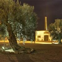 Visite serali al Museo della liquirizia Giorgio Amarelli per il mese di agosto