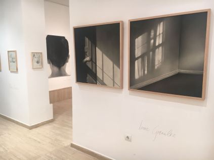 Galeria Silvestre, Madrid. Klaas Vanhee - Irene Gonzales.