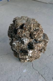 Jàchym Fleig, Knolle, (2007), gesso, nido d'ape, 80 x 60 x 60 cm