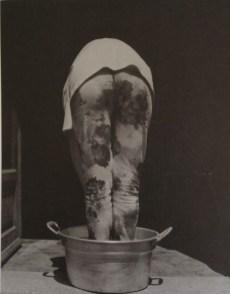 Turi Rapisarda, Piante (1990 - 1993). Fotografia bn - stampa su carta ai sali d'argento da negativo, 118 x 81 cm