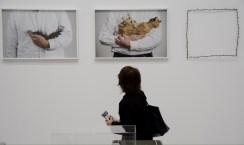 Lois Weinberger, Debris Field, 2010/16