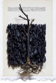 GIUSEPPE NEGRO - Introduzione alla fragilità