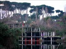 Alberto Timossi_Spilli_Laghetto dell'Ex Snia, Roma_2018
