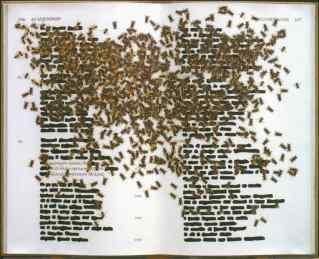 Emilio Isgrò, Bassa Agamennone, tecnica mista su libro, 2 005