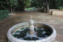 Wang Michael, Orto Botanico Manifesta 12 - Palermo