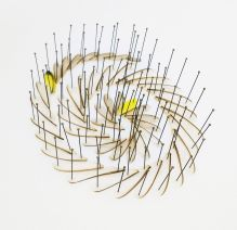 Alice Padovani, Ali di formica e due piume gialle, 2018