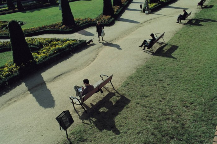 People reading in a park View of people reading books on the bench of a park