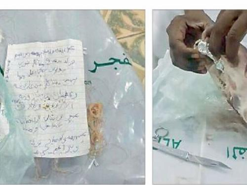 The head of the sheep with signs of black magic found in the backyard of a family house in Riyadh.