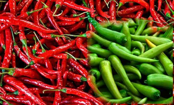 Indian-peppers