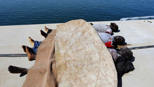 Three dead illegal migrants, that were picked up the the Libyan coastguard, are laid out on a dock after their boat sank off the coastal town of Garabulli, 60 km east of Tripoli on September 15, 2014. Dozens of African migrants were missing and feared dead after their boat sank off the coast of Libya, a Libyan navy spokesman told.