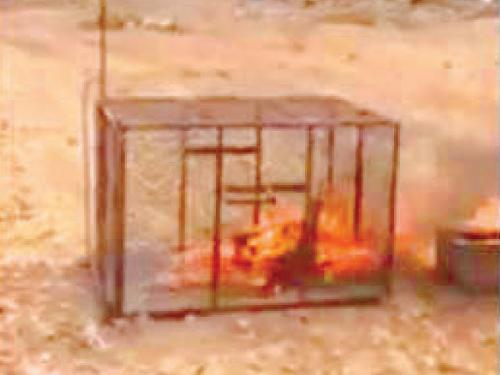 The snapshot of the video clip showing the fox being burned alive at Sarat Abeedah, Asir Province.
