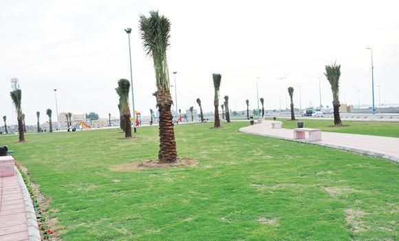 There are a number of gardens in Jeddah but their poor maintenance and unhygienic conditions have kept people away.