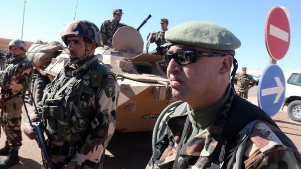 Algerian army algeria military