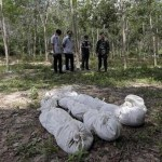 Malaysia finds mass graves of suspected trafficking victims