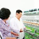 N. Korea says it has cure for Ebola, AIDS, coronavirus