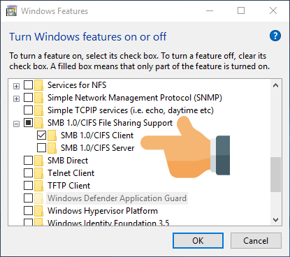 password box not showing windows 10