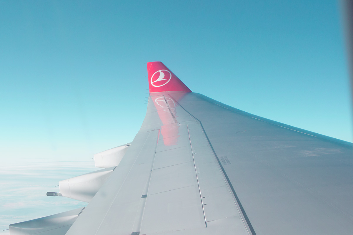 Turkish Airlines Wing