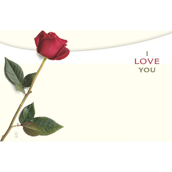 I Love You With Single Red Rose Love Floral Cards