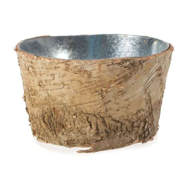 6 In Dia X 3 12 In H Birch On Metal Container Birch