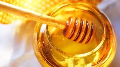 Photo of كيف تميزين بين العسل الحقيقي الطبيعي والمغشوش