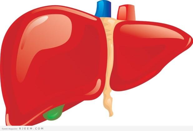 الكبد - مرض التهاب الكبد