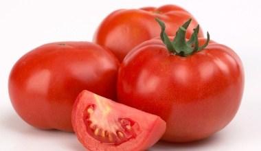 Photo of الطماطم – اهمية الطماطم الصحية و الجمالية