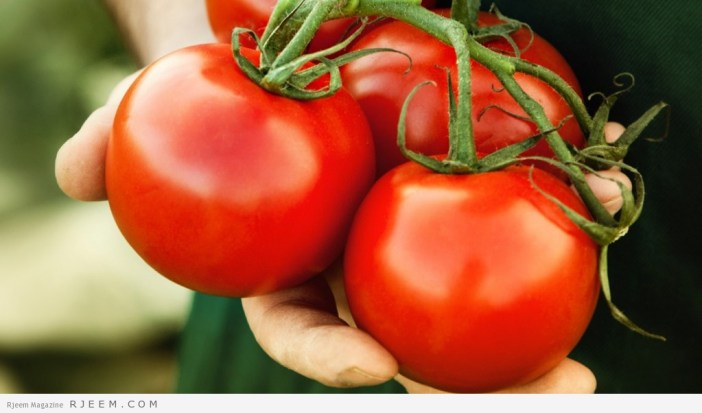 hero_tomatoes_held