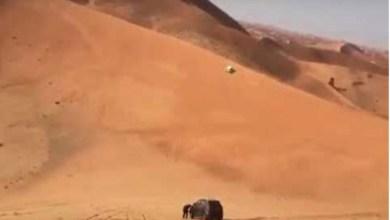 Photo of فيديو: لحظة تطاير مطعّس من سيارته بعد انقلابها