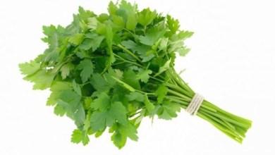 Photo of تجنب هذه الأطعمة إذا كنت تعاني من حساسية الربيع