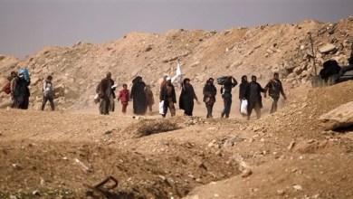Photo of العراق: 300 مدني نزحوا من تلعفر منذ بدء عملية تحريرها