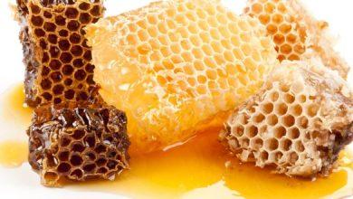 Photo of وصفة العسل والقرفة لبشرة نضرة هذا الخريف
